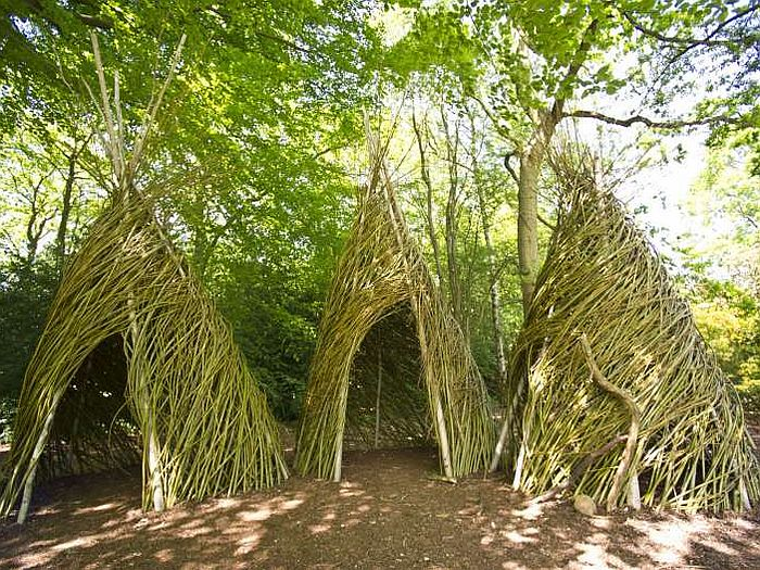 Willow wigwams in summer